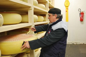 Pierre kontrollert Käse