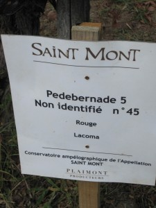 Gascogne- Saint Monat - Weinmuseum- 13